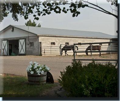 Stall Barn